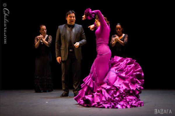 bailaora de flamenco