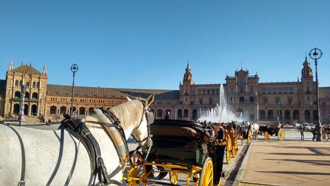 coches de caballos en la plaza de españa de sevilla