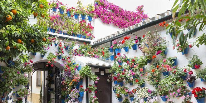 patios decorados de Córdoba